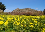 Spring in the Ricote valley, end of the Castles and Sanctuaries bike route. Day 7. © Alex Rodier