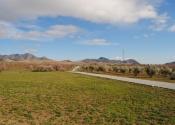 Le chemin vers Chirivel, le dernier jour, se fait à travers de grands champs d'amandiers, d'oliviers et de céréales. Jour 6. Auteur: Alex Rodier